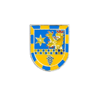 Pins der Verbandsgemeinde Sprendlingen-Gensingen in Softemaille